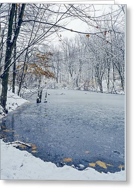 Nature Center Greeting Cards - Winter Wonderland 3 Greeting Card by Sharon Norman