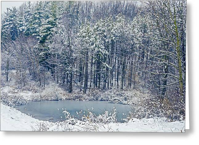 Nature Center Greeting Cards - Winter Wonderland 4 Greeting Card by Sharon Norman