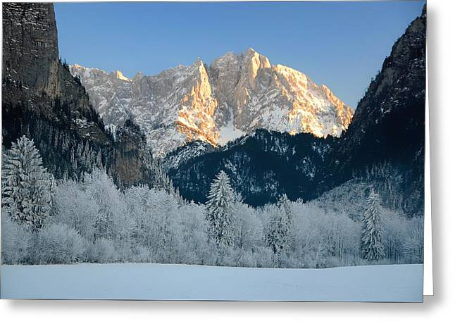 Snow-covered Landscape Photographs Greeting Cards - Winter Wonderland In Austria Greeting Card by Frank Josef