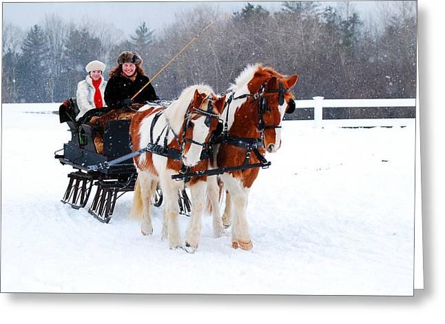 Berkshires Of New England Greeting Cards - Winter Wonderland Greeting Card by James Kirkikis