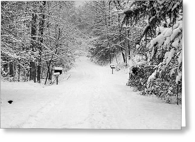 Mountain Road Greeting Cards - Winter Wonderland Greeting Card by Lenora Rodrigues