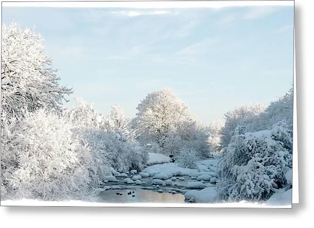 Mark Denham Greeting Cards - Winter Wonderland Greeting Card by Mark Denham
