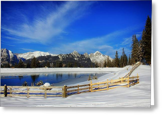 Snow-covered Landscape Greeting Cards - Winter Wonderland Greeting Card by Melanie Schamboeck