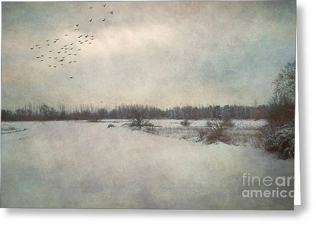 Winter Wonderland. Greeting Card by Robert Brown