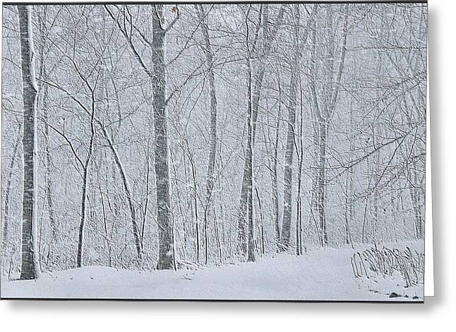Winter Woodland Greeting Card by Kristin Elmquist