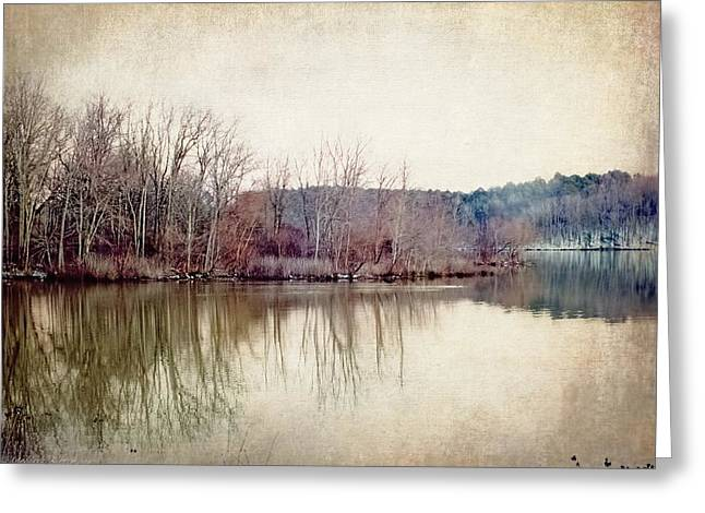 Peaceful Scene Greeting Cards - Winters Lake Greeting Card by Melissa Bittinger