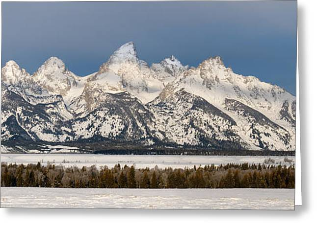 Winterscape Greeting Cards - Winters Majesty Greeting Card by Sandra Bronstein