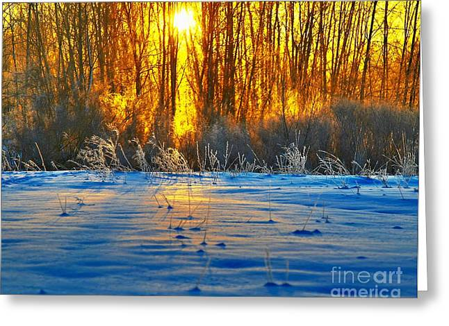 Snow Scene Landscape Mixed Media Greeting Cards - Winters morning Greeting Card by Robert Pearson
