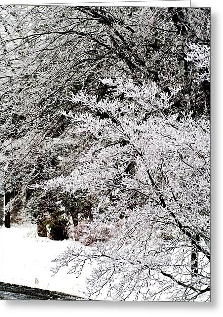 Winters Reminder Greeting Card by Scott  Wyatt