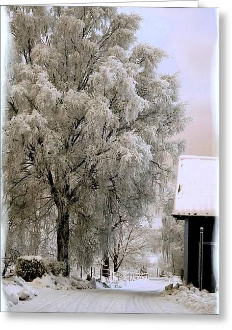 Winter's Tale Greeting Card by TinaDeFortunata