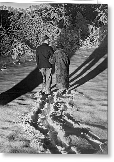 Wintry Photographs Greeting Cards - Wintertime Moonlight Stroll  Greeting Card by American School