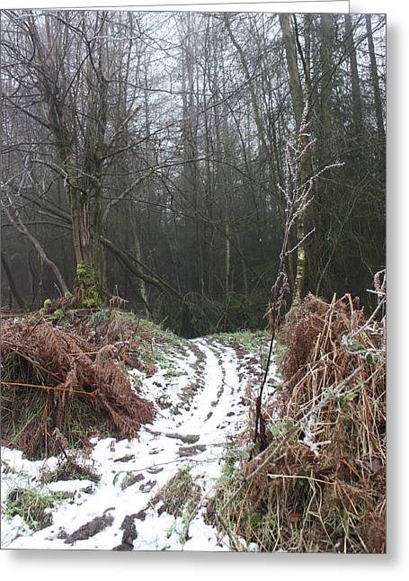 Cannock Chase Greeting Cards - Wintertime on Cannock Chase Greeting Card by Jean Walker