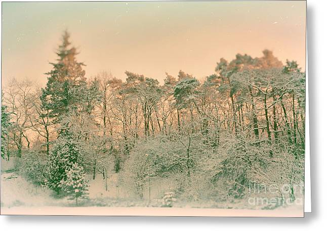 Sunset Abstract Photographs Greeting Cards - Winterzauber Greeting Card by SK Pfphotography