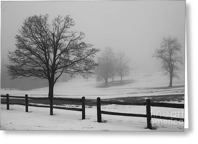 Kansas City Photographer Greeting Cards - Wintry Morning Greeting Card by Crystal Nederman