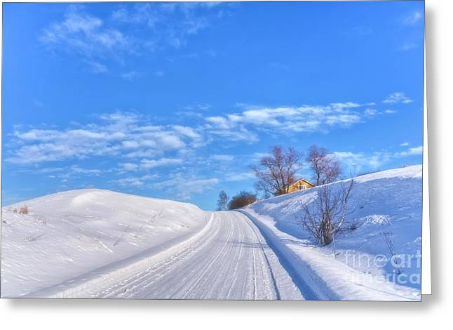 Wintry Road Takes You... Greeting Card by Veikko Suikkanen