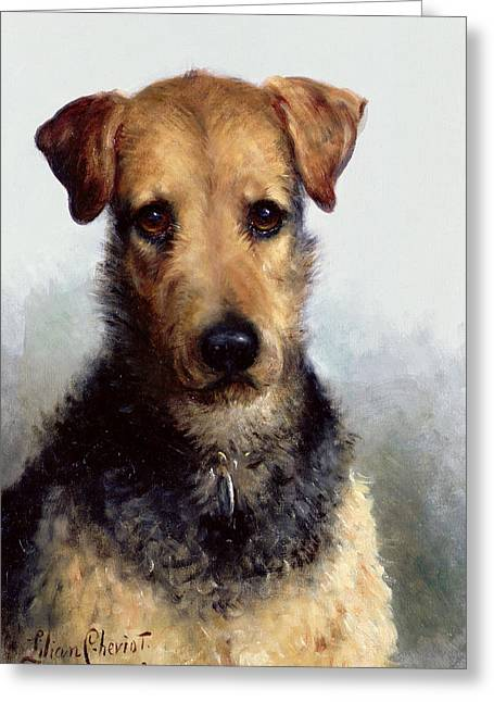 Collar Paintings Greeting Cards - Wire Fox Terrier Greeting Card by Lilian Cheviot