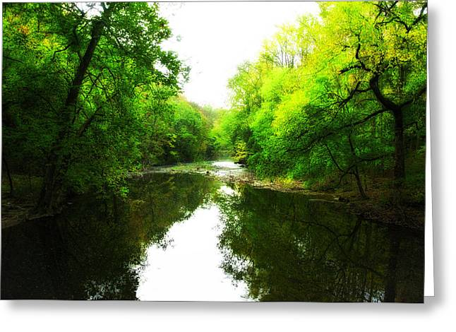 Wissahickon Greeting Cards - Wissahickon Morning Greeting Card by Bill Cannon