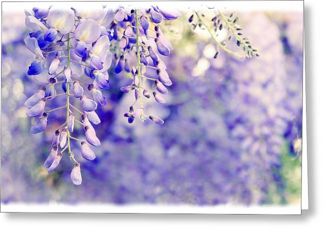 Vines Greeting Cards - Wisteria Watercolor Greeting Card by Jessica Jenney