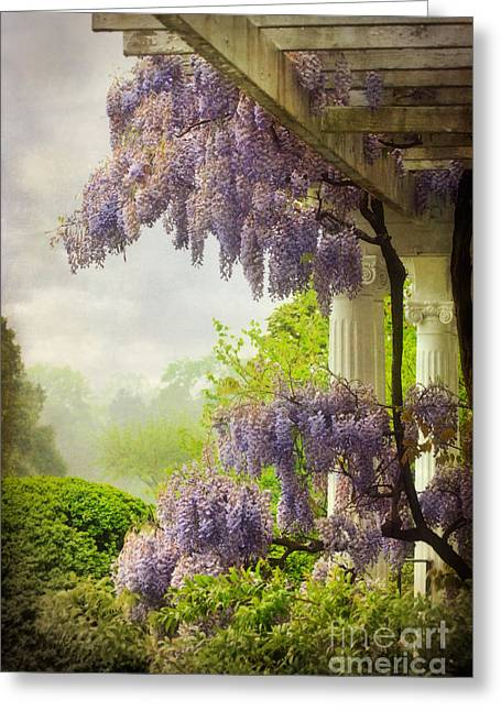 Wisteria Greeting Cards - Wisteria in a Spring Shower Two Greeting Card by Susan Isakson