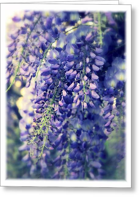 Wisteria Leaves Greeting Cards - Wisteria Whimsy Greeting Card by Jessica Jenney