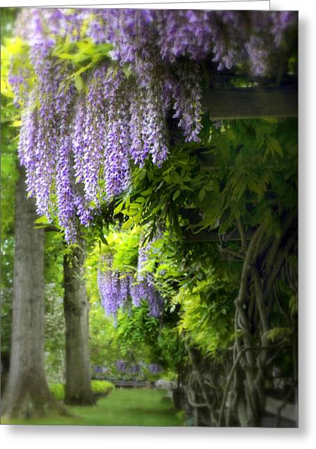 Trellis Greeting Cards - Wisteria Woodland Greeting Card by Jessica Jenney