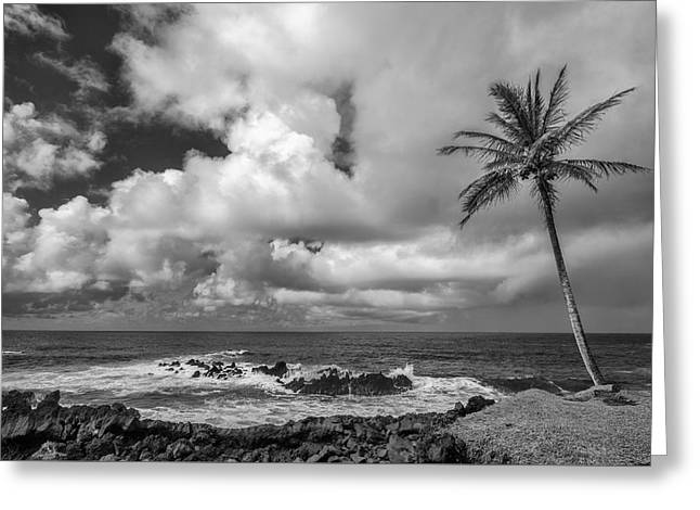 Sand Art Greeting Cards - Within Reach II Greeting Card by Jon Glaser