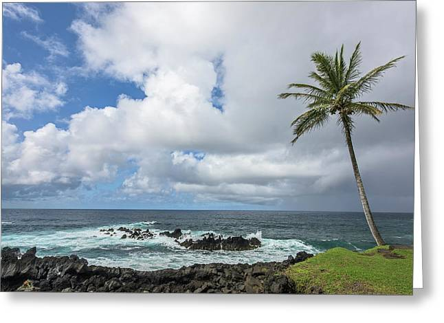 Photo Art Gallery Greeting Cards - Within Reach Greeting Card by Jon Glaser