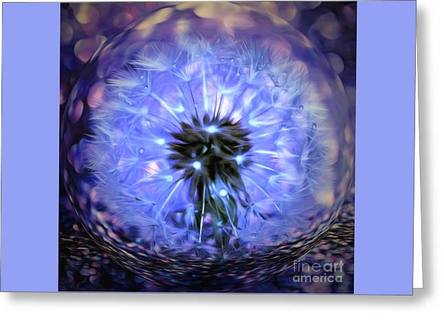 Within This Wish Greeting Card by Krissy Katsimbras