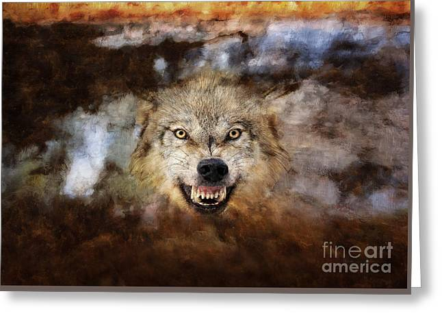 Growling Greeting Cards - Wolf Art Greeting Card by Wildlife Fine Art