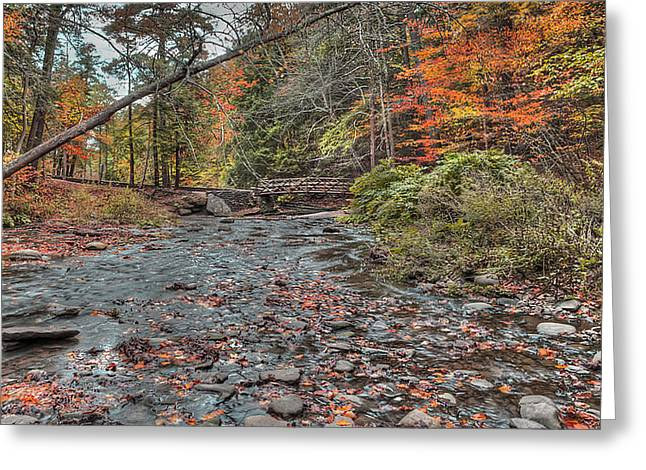 Wolf Creek Greeting Cards - Wolf Creek at Letchworth State Park, NY Greeting Card by Joe Granita