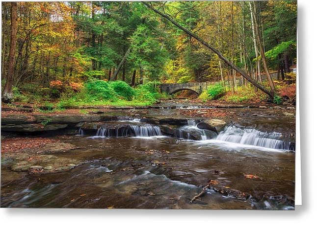 Wolf Creek Photographs Greeting Cards - Wolf Creek Greeting Card by Mark Papke