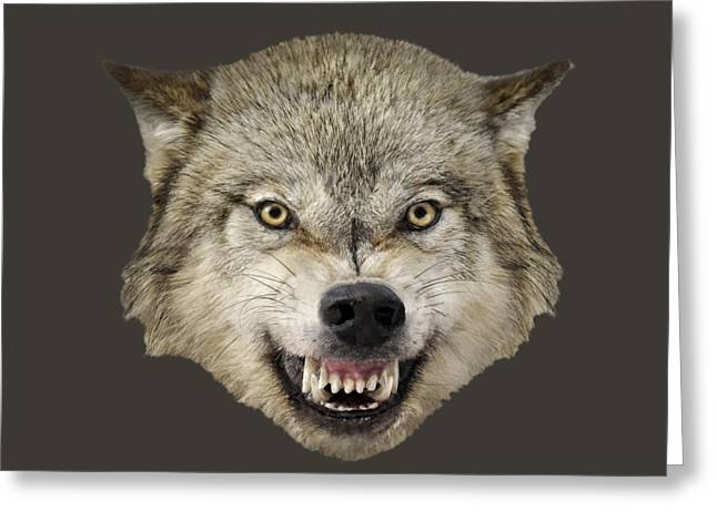 Growling Greeting Cards - Wolf Snarling Greeting Card by Wildlife Fine Art
