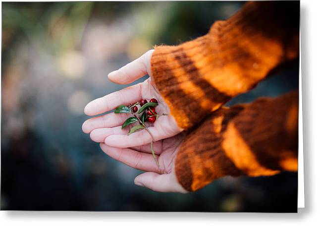 Hands Greeting Cards - Woman hands holding cranberries Greeting Card by Aldona Pivoriene