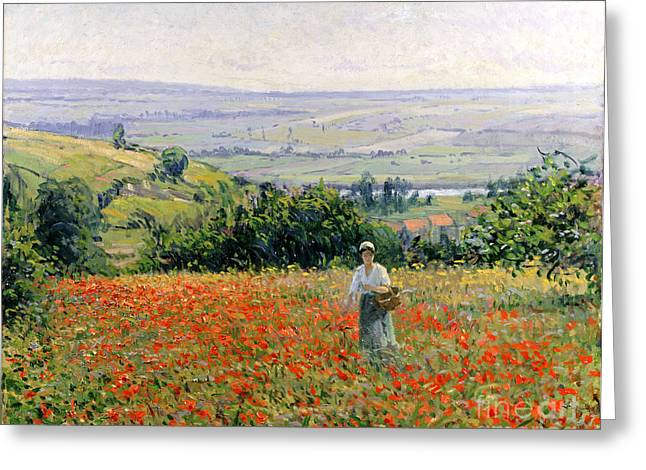 In A Tree Greeting Cards - Woman in a Poppy Field Greeting Card by Leon Giran Max