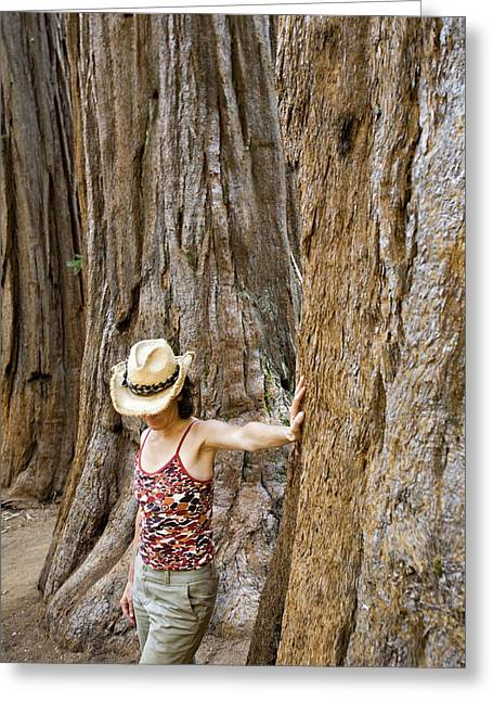 Observer Greeting Cards - Woman Leaning On Giant Sequoia Tree Greeting Card by Dawn Kish