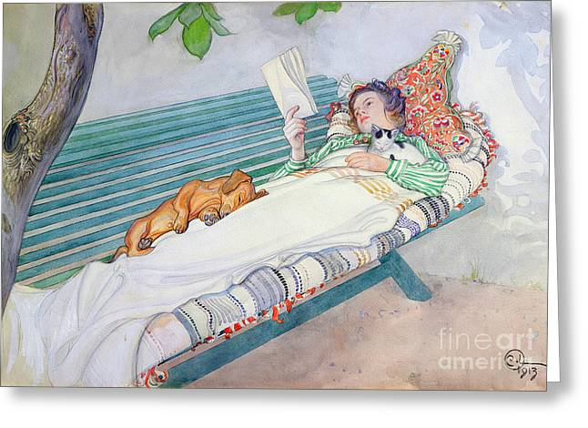 Pets Greeting Cards - Woman Lying on a Bench Greeting Card by Carl Larsson