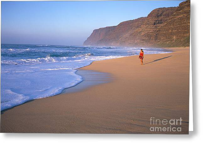 Foggy Beach Greeting Cards - Woman on Beach Greeting Card by Bill Schildge - Printscapes