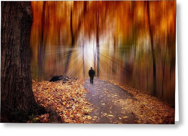 Blur Greeting Cards - Wondrous Woodland Greeting Card by Jessica Jenney