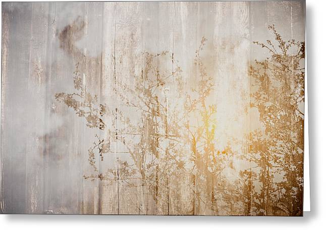 Wood Background With Branches Double Exposure Style With Instagr Greeting Card by Brandon Bourdages
