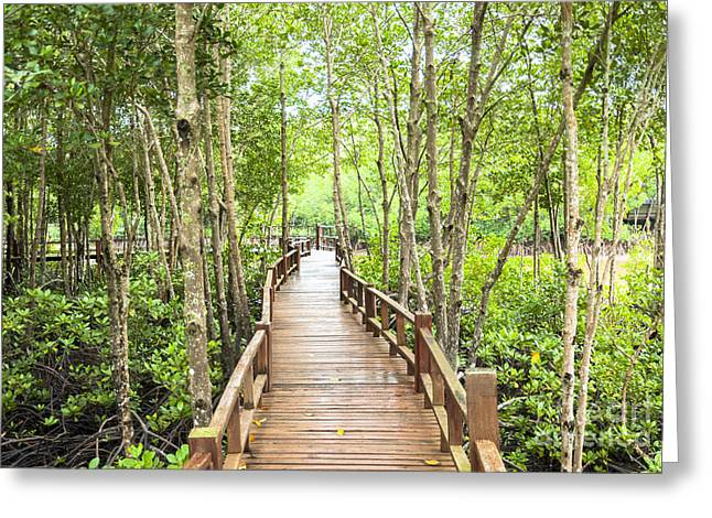Mangrove Forest Greeting Cards - Wood corridor at mangrove forest Greeting Card by Phongkit Longthong