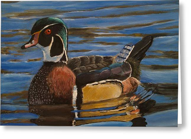 Reflections In River Greeting Cards - Wood Duck Greeting Card by Aaron Berryman