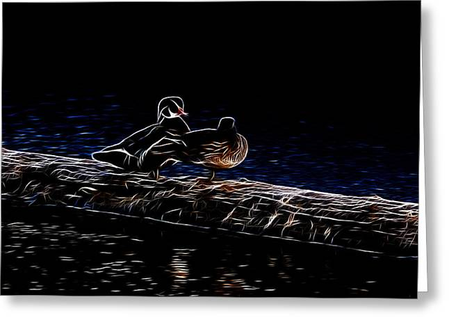 Wood Duck Greeting Cards - Wood Duck Pair - Fractal Greeting Card by Lawrence Christopher