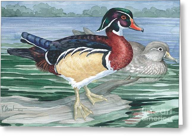 Duck Pond Greeting Cards - Wood Ducks Greeting Card by Paul Brent