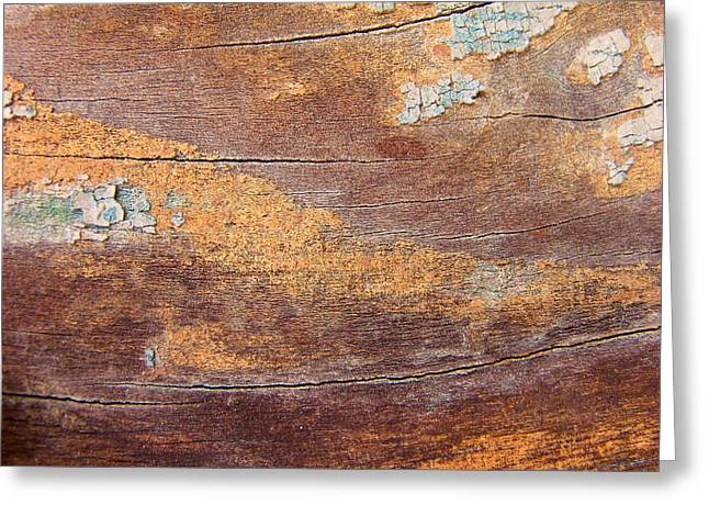 Photografie Greeting Cards - wood No 4 Greeting Card by Renata Vogl