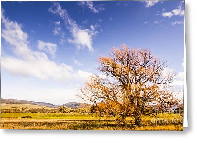 Woodbury In Fall Greeting Card by Jorgo Photography - Wall Art Gallery