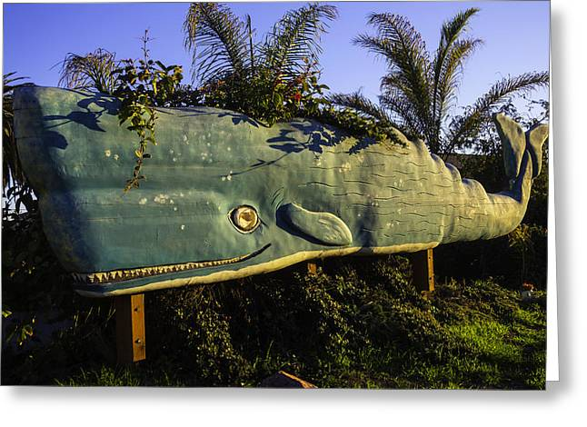 Wooden Green Whale Greeting Card by Garry Gay