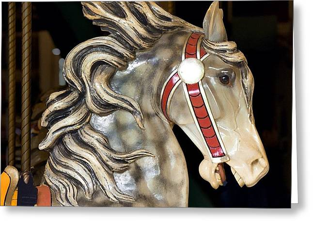 Prospects Greeting Cards - Wooden Horse 2 Prospect Park Greeting Card by Richard Xuereb