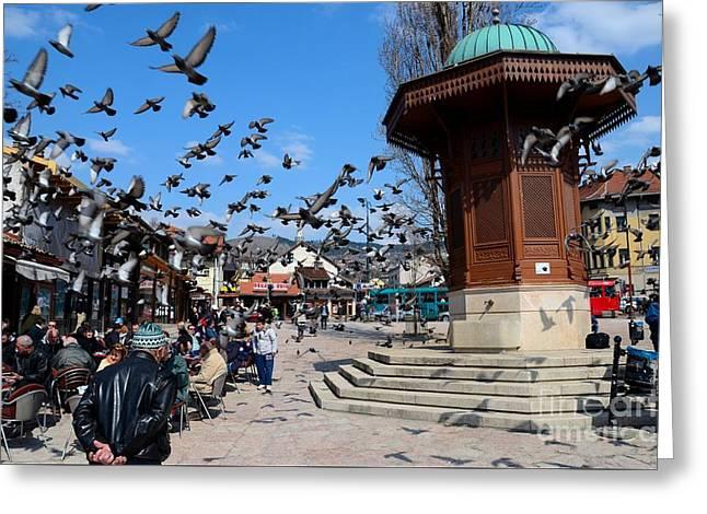 Stepping Stones Greeting Cards - Wooden Ottoman Sebilj water fountain in Sarajevo Bascarsija Bosnia Greeting Card by Imran Ahmed