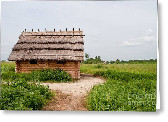 Civilization Greeting Cards - Wooden Slav hut with thatch Greeting Card by Arletta Cwalina