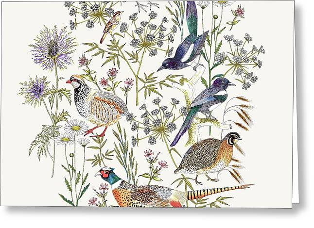 Woodland Edge Birds Placement Greeting Card by Jacqueline Colley